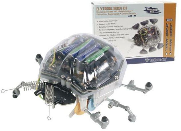 Robot Ladybug - zestaw do samodzielnego montażu