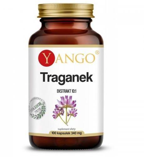 Traganek - ekstrakt 10:1 - 100 kaps Yango