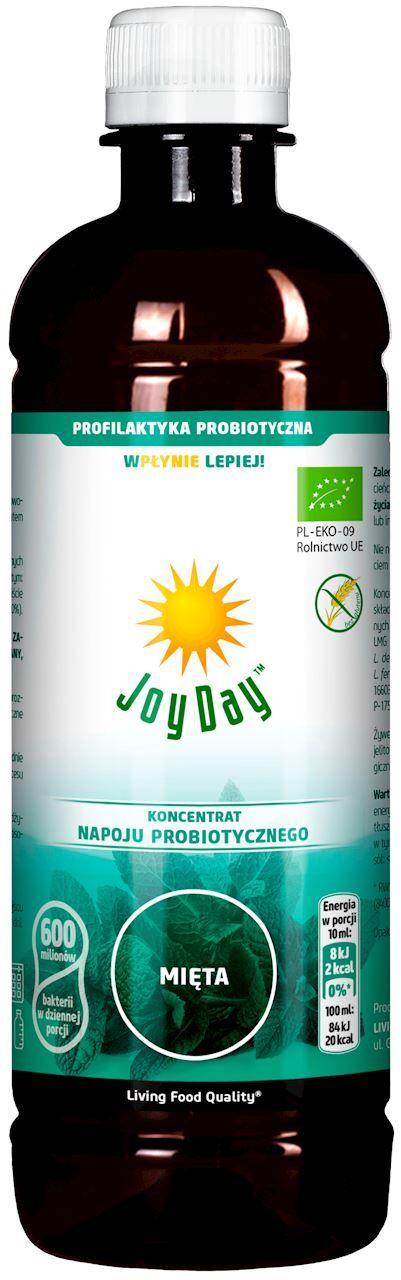 Koncentrat napoju probiotycznego mięta bio 500 ml - joy day