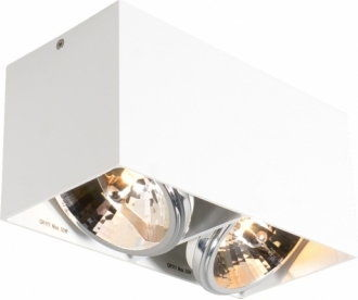 Rondoo lampa sufitowa 1-punktowa kierunkowa biała/srebrna 45519