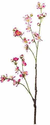 EUROCINSA Ref.89045C25 jabłko w kształcie kwiatu, różu, fuksja, pudełko 12 sztuk, 83 cm