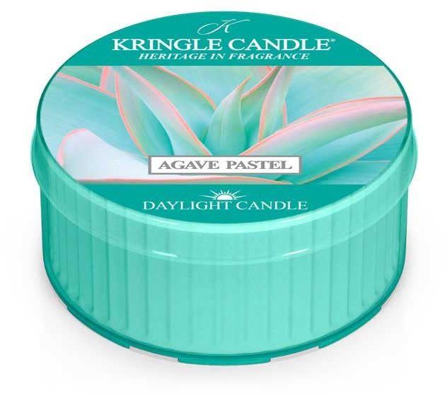 Agave Pastel daylight Kringle Candle