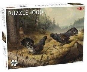 Puzzle 1000 Fighting Capercailles - Tactic