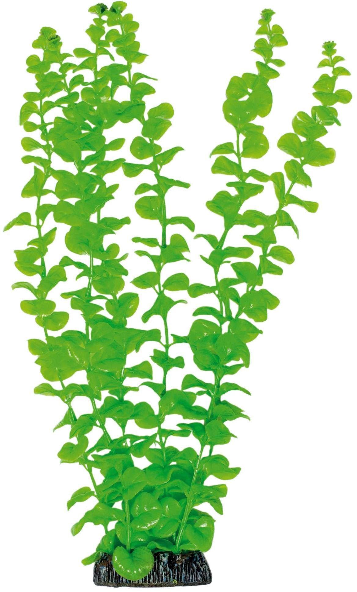 ICA AP1011 Bacopa dla roślin wodnych, tworzywo sztuczne
