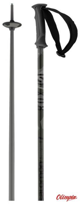 Kije narciarskie Salomon X 08 GREY BLACK 2021/2022
