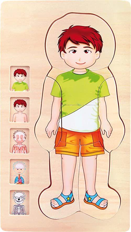 mała stopka 5842 drewniane puzzle anatomiczny chłopiec, szkielet, mięśnie, krwioobieg i narządy wewnętrzne, 29 szt. Puzzle