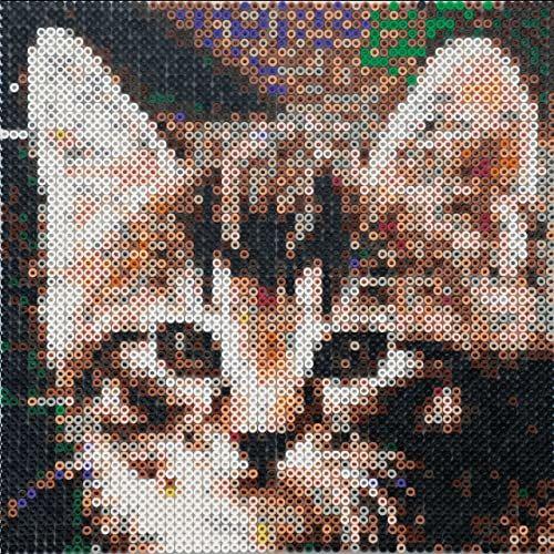 EFCO Perły fotograficzne po numerze kot z akcesoriami ~Ø 5 x wys. 5 mm 3,600 szt, wielokolorowe, 30 x 21 x 2 cm