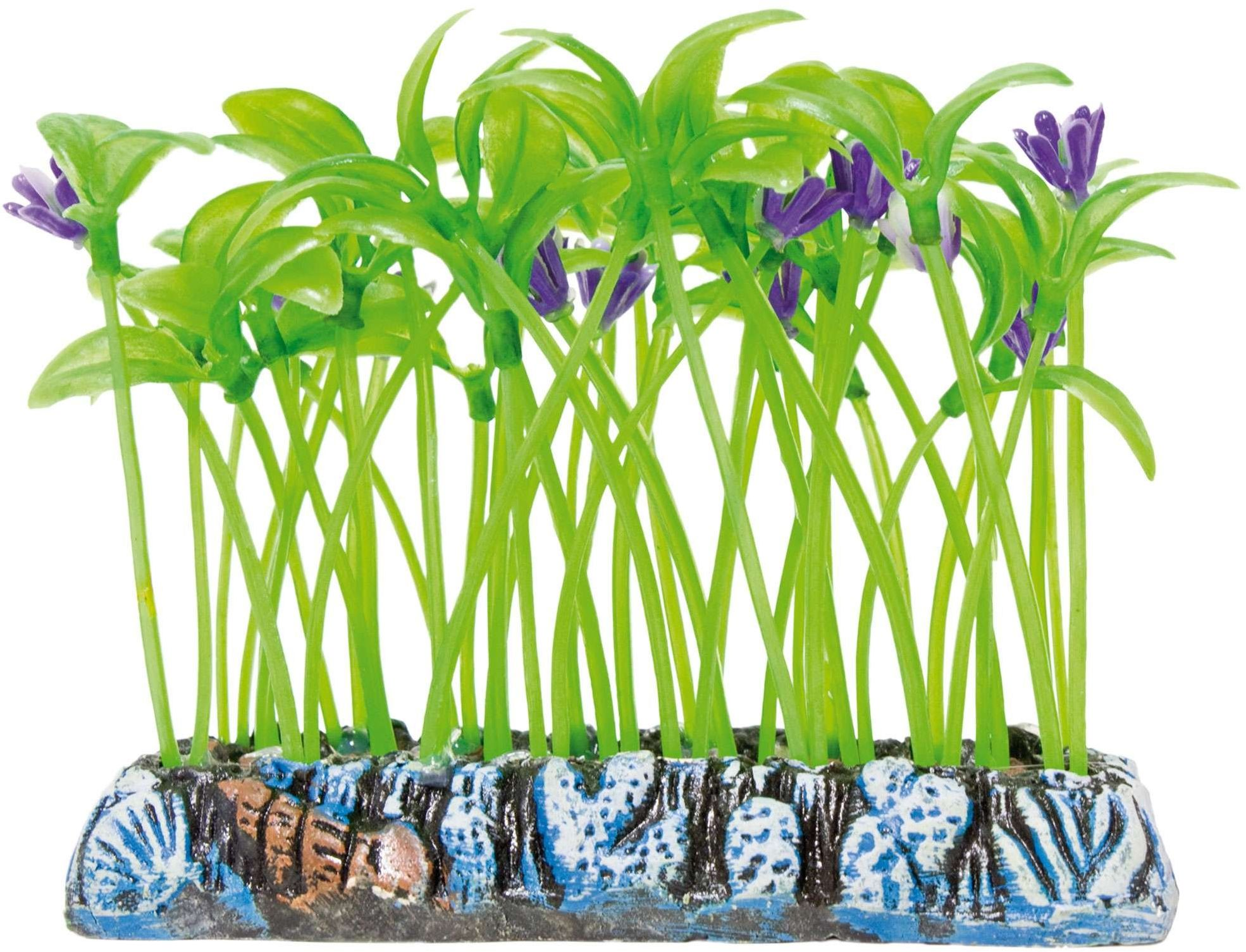 ICA AP1210 Dracaena rośliny wodne plastik