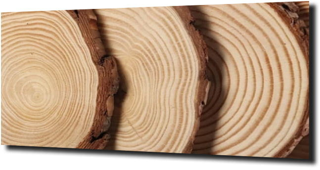 obraz na szkle Deska drewno natura 39 120X60