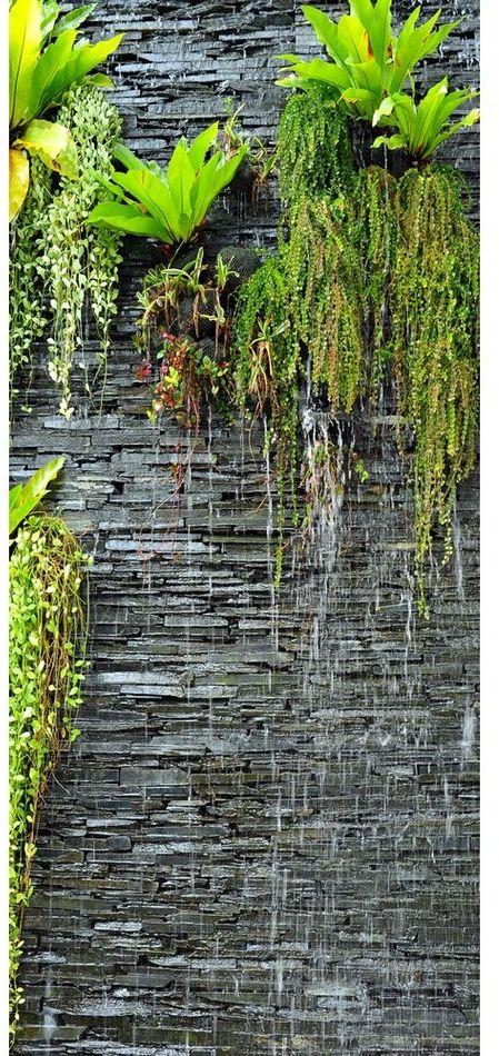 Tapeta fotograficzna pionowa Green in the wall, 90 x 202 cm