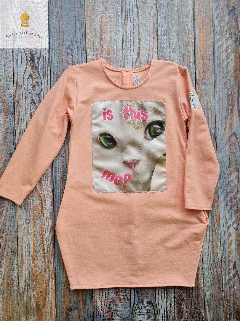 Kids fashion Sukienka dla dziewczynki z kotkiem dł. rękaw łososiowa r.98-128