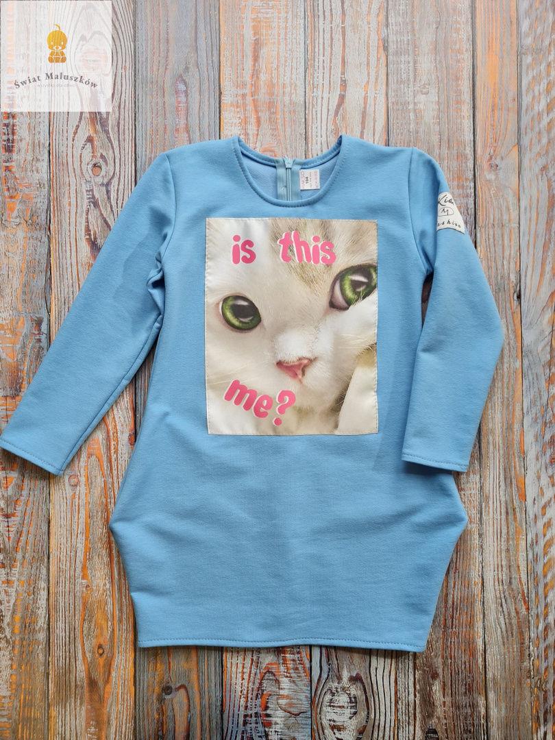Kids fashion Sukienka dla dziewczynki z kotkiem dł. rękaw niebieska r.98-128
