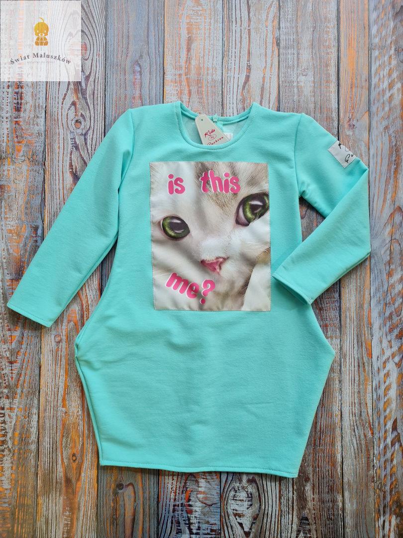 Kids fashion Sukienka dla dziewczynki z kotkiem dł. rękaw miętowa r.104-128