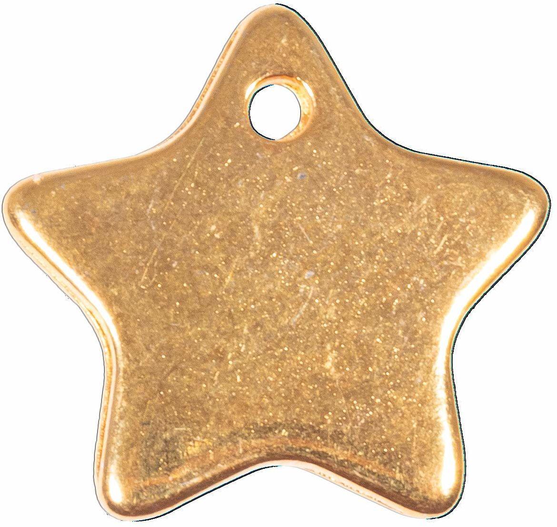 Rayher 22781616 metalowa zawieszka gwiazda, złota, 19x9 mm, SB-Btl 2 sztuki, normalna