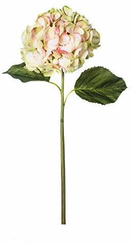 EUROCINSA Ref.62010C51 Hortensia różowy, pudełko z 6 sztuk, białe, zielone, 69 cm