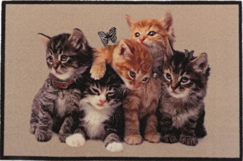 oKu-Tex Designerska wycieraczka koty kotki Kitten zabawny i śliczny motyw, antypoślizgowa i nadająca się do prania, dekoracyjna ozdoba, brązowa, 40 x 60 cm, małe koty, 1460119