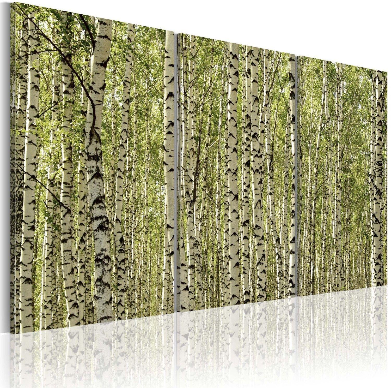 Obraz - las brzozowy