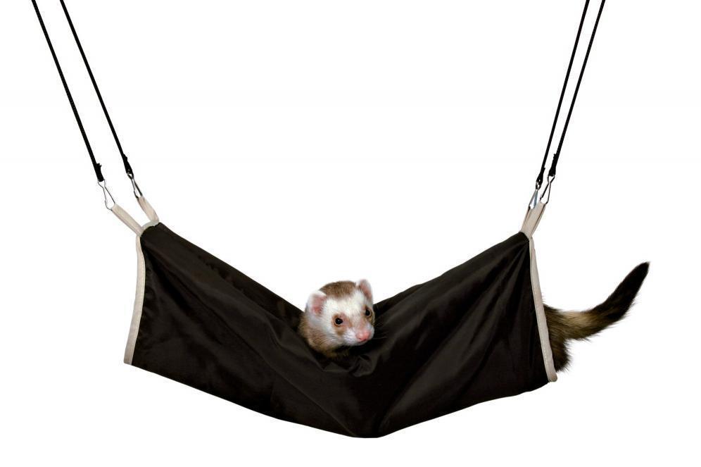 Wiszący tunel dla fretek i szczurów