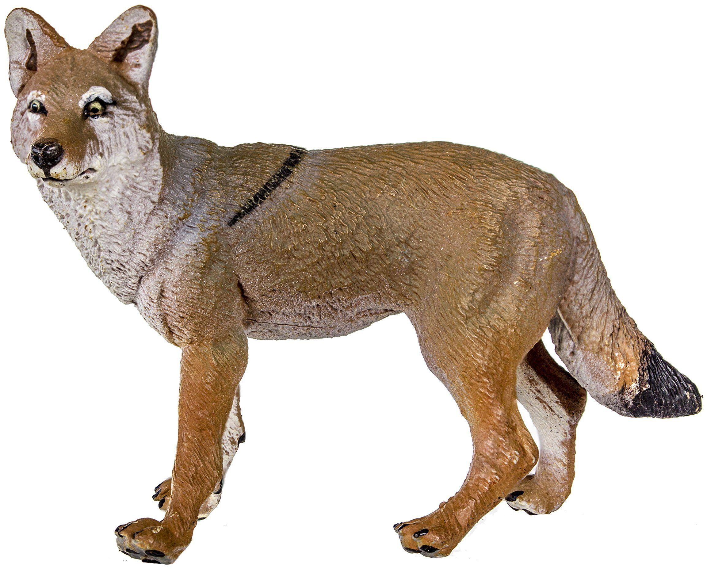 Safari S227229 Dzika przyroda Ameryki Północnej kojot miniaturowy plastik miniatura