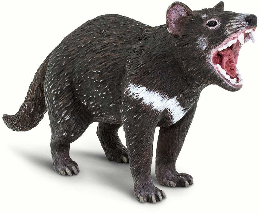 Safari - Zwierzęta Tasmańskie, wielokolorowe (S100247)