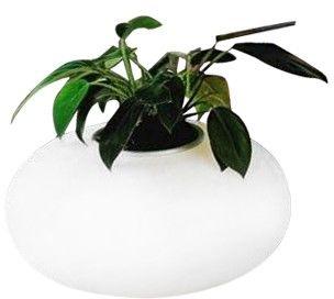 Lampa stołowa FLORA AZ0185 - Azzardo - Zapytaj o kupon rabatowy lub LEDY gratis