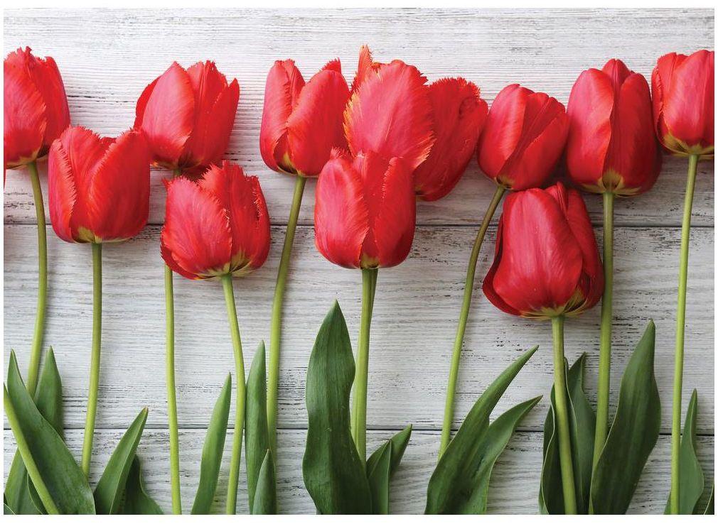 Deska do krojenia tulips RED Alfa-Cer