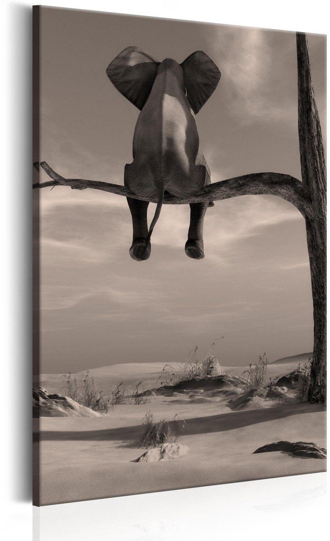 Obraz - słoń na pustyni