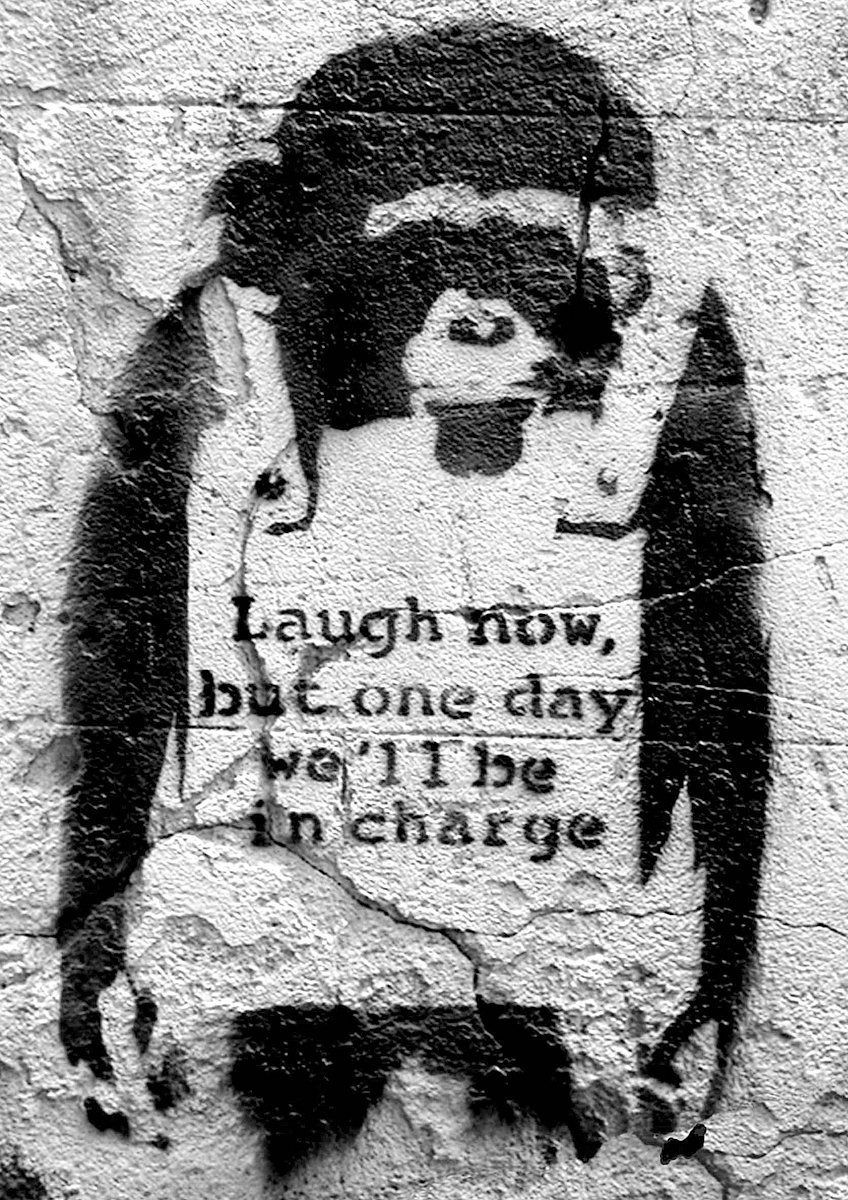 Banksy monkey laugh now, but one day we''ll be in charge - plakat