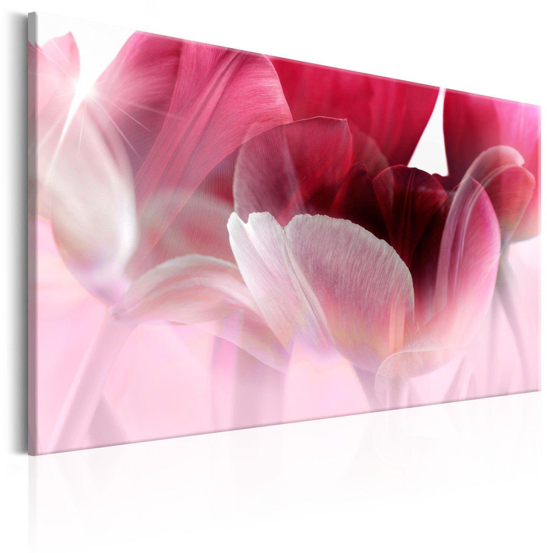 Obraz - natura: różowe tulipany