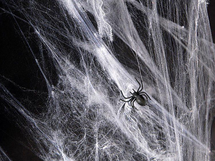 Sztuczna pajęczyna biała 60g PH60-008
