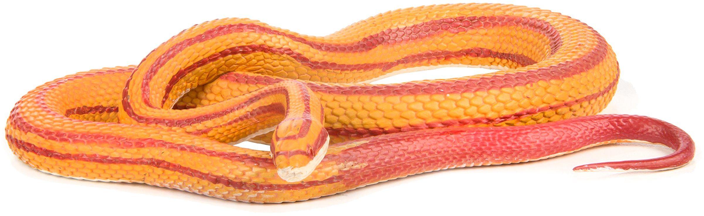 Safari 100073 Niesamowite stworzenia kukurydza wąż miniatura