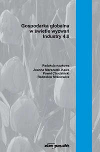 Gospodarka globalna w świetle wyzwań - Joanna Marszałek-Kawa, Paweł Chudziński, Radosław