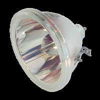 Lampa do PHILIPS P4500 - oryginalna lampa bez modułu