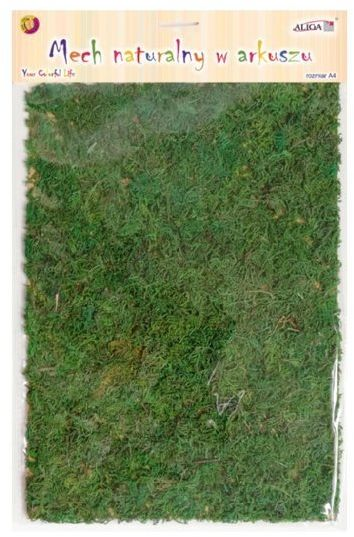 Mech chrobotek naturalny zielony w arkuszu A4 MECH-6365