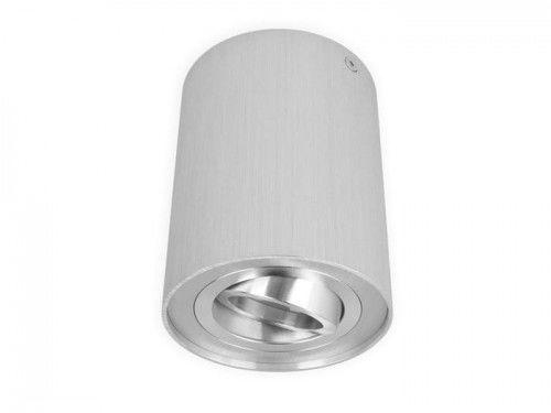 Oprawa sufitowa natynkowa punktowa okrągła ruchoma ROLLO - srebrna szczotkowana