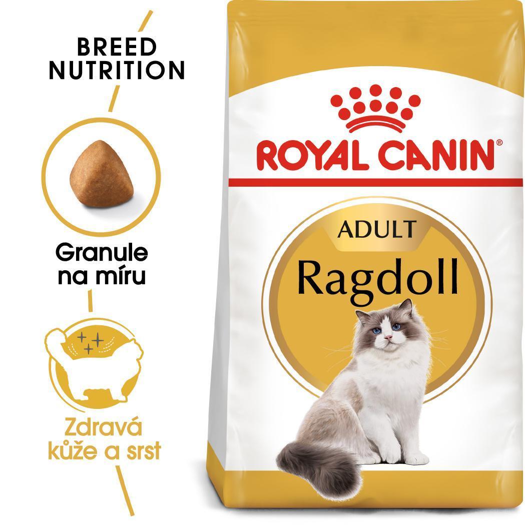 RC cat RAGDOLL