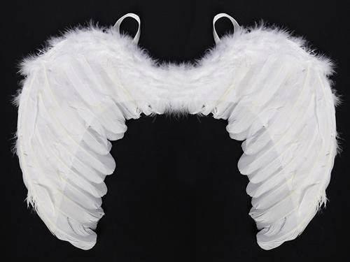Skrzydła anioła białe - 48 x 28 cm - 1 szt.
