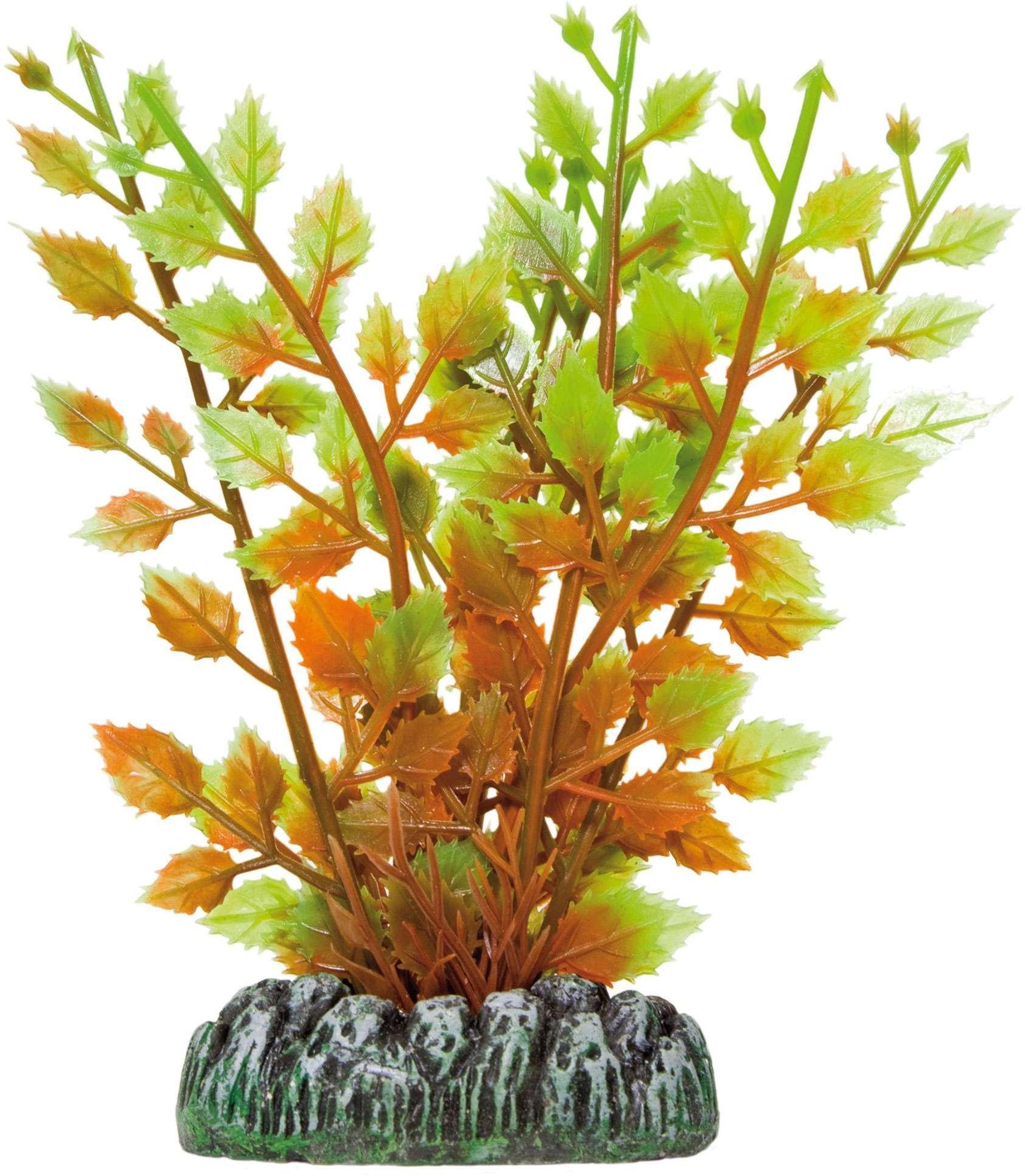 ICA AP1020 Hygrophila z roślin wodnych, tworzywo sztuczne