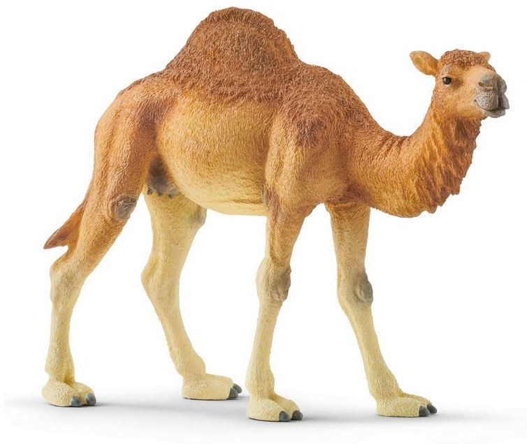 Figurka Wielbłąd Dromader