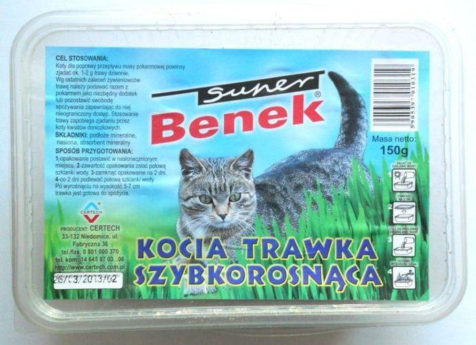 CERTECH Trawka szybkorosnąca dla kota 150g w plastikowym pudełku