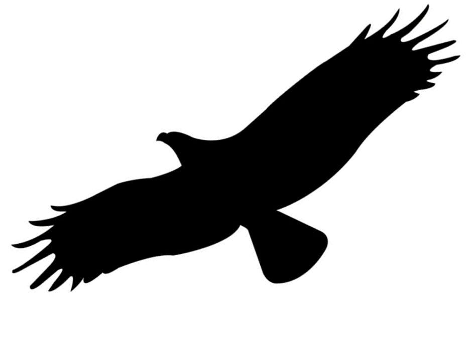 Naklejka, nalepka sylwetka ptaka (wzór L20)