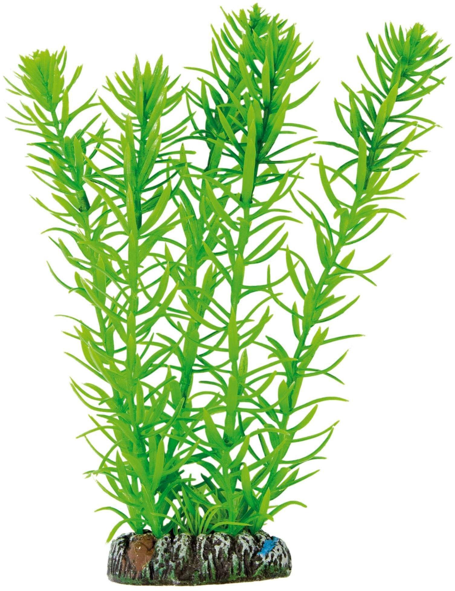 ICA AP1017 Aquatic rośliny z tworzywa sztucznego