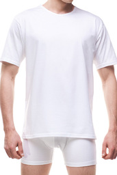 Koszulka Męska 202 4-5XL