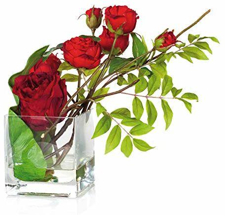 EUROCINSA Ref.20450C20 skrzynka z różami, 1 sztuka, tworzywo sztuczne, szkło, kolor czerwony, 23 x 28 cm