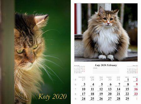 Kalendarz 2020 wieloplanszowy Koty