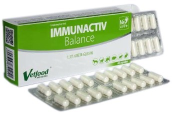 Immunactiv Balance dla psa i kota 60 kaps