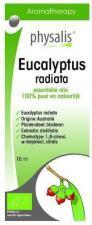 Olejek eteryczny eucalyptus radiata EUKALIPTUS AUSTRALIJSKI BIO 10 ml Physalis