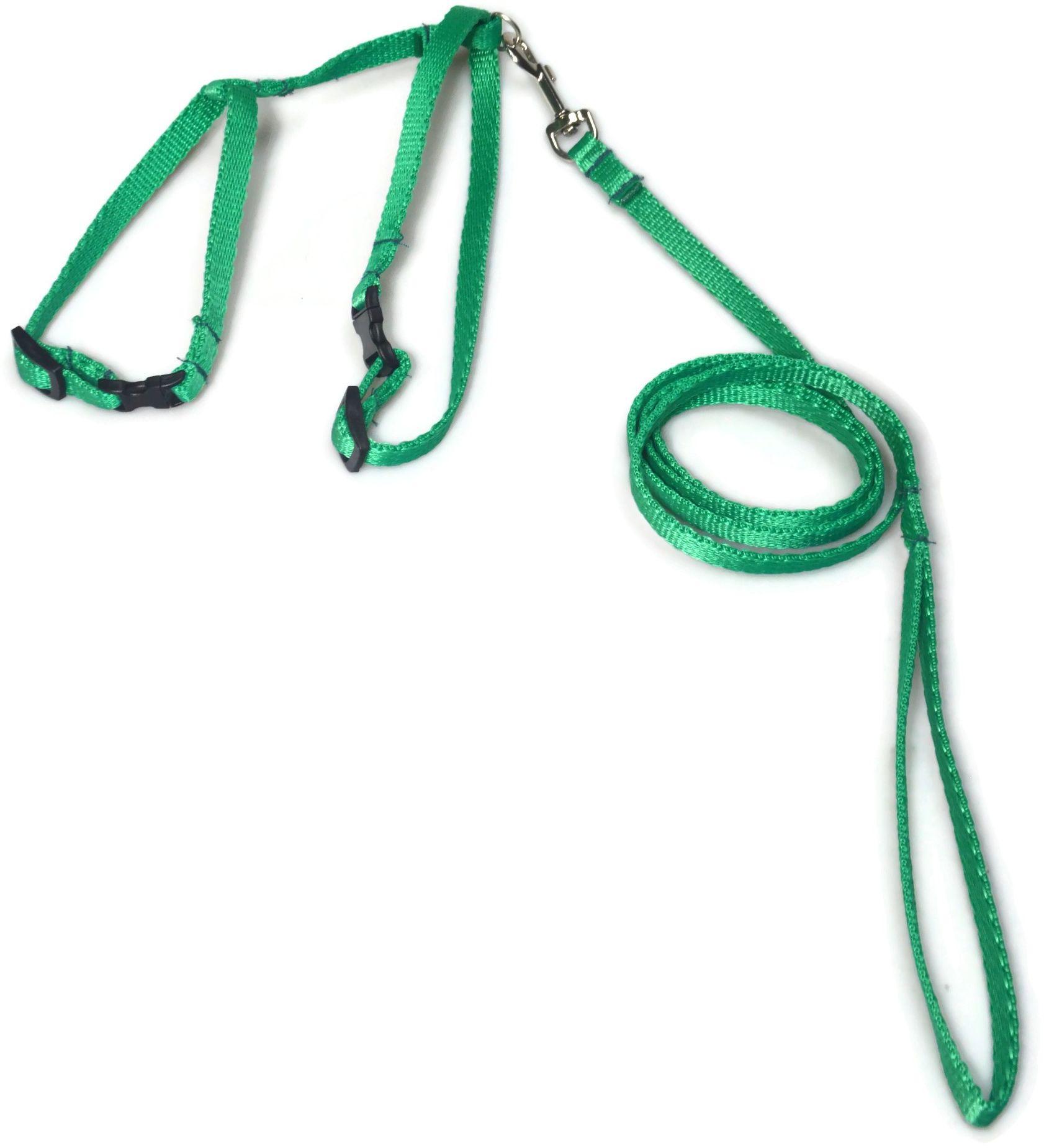 A-058 KOMPLET DLA KOTA V.1 : Kolor - Zielony - ALIZOO