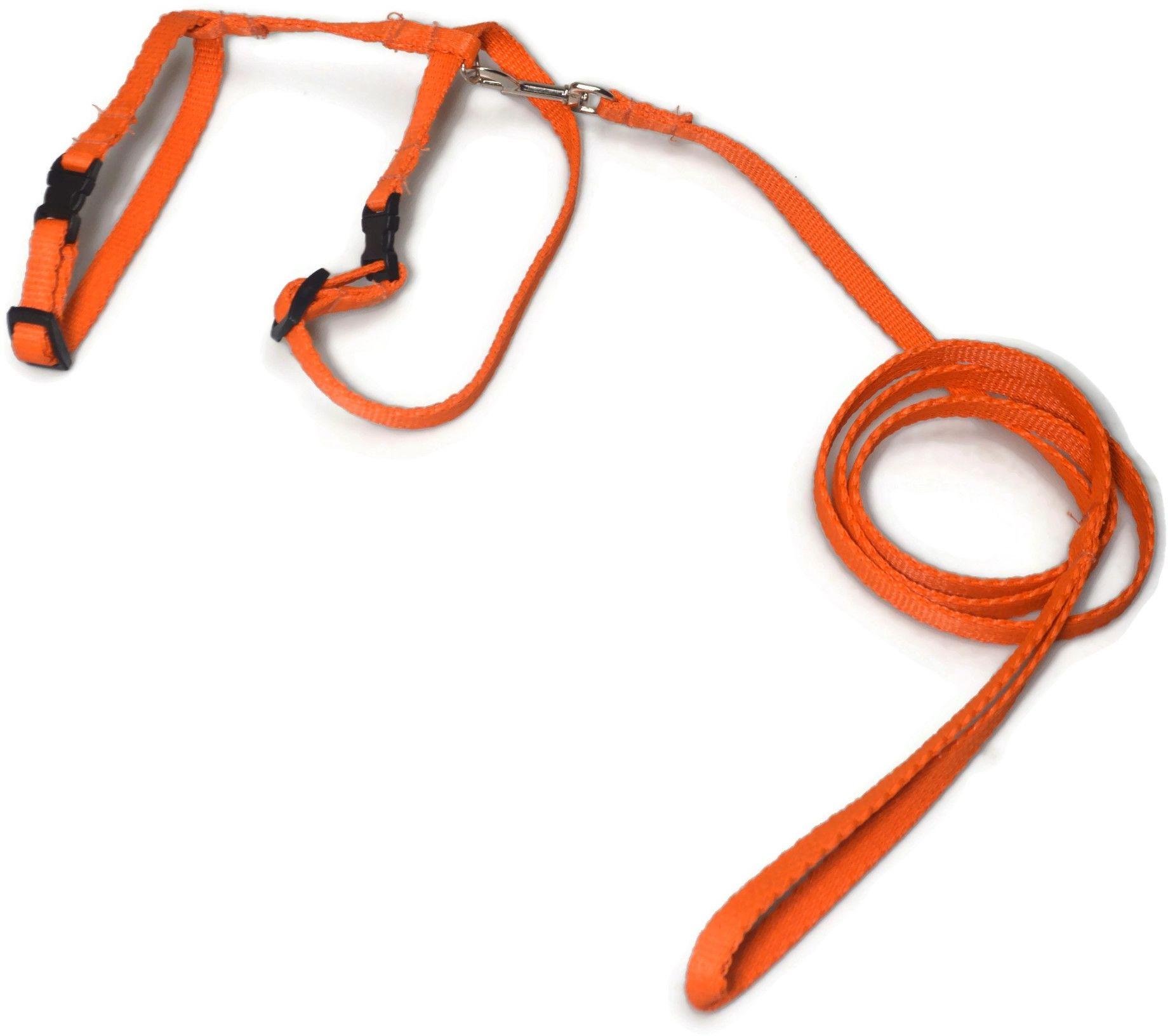 A-058 KOMPLET DLA KOTA V.1 : Kolor - Pomarańczowy - ALIZOO
