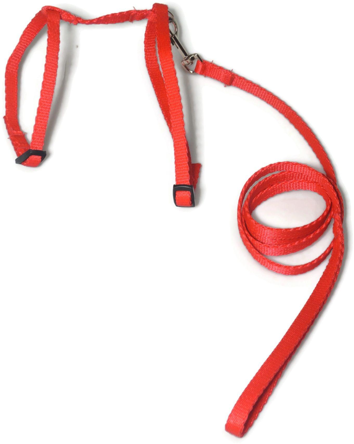 A-059 KOMPLET DLA KOTA V.2 : Kolor - Czerwony - ALIZOO
